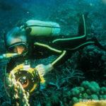 Jacques Cousteau, su legado y enseñanzas
