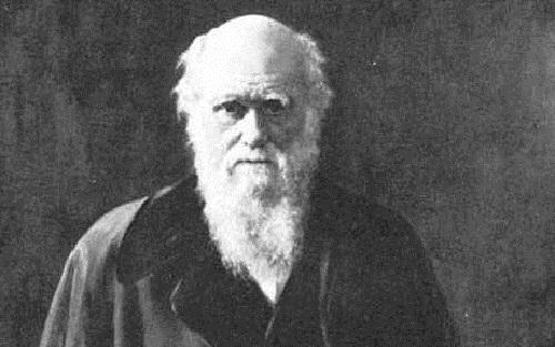 Charles Darwin, padre de la evolución