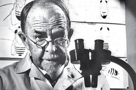 Thomas Hunt Morgan, experto en genética